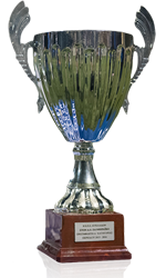 http://panthiraikos.gr/wp-content/uploads/2019/01/trophy.png